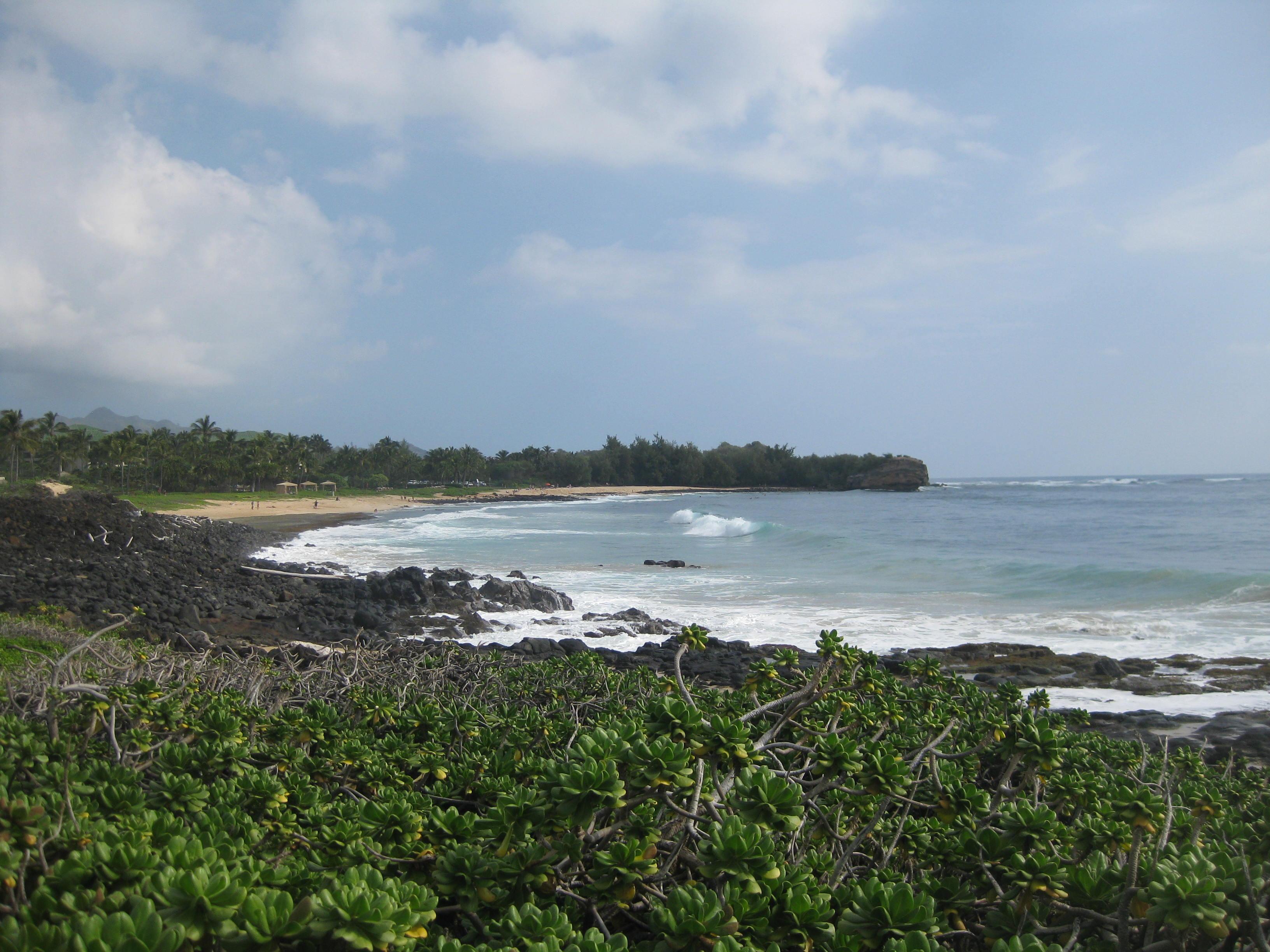 Kauai Beach 2