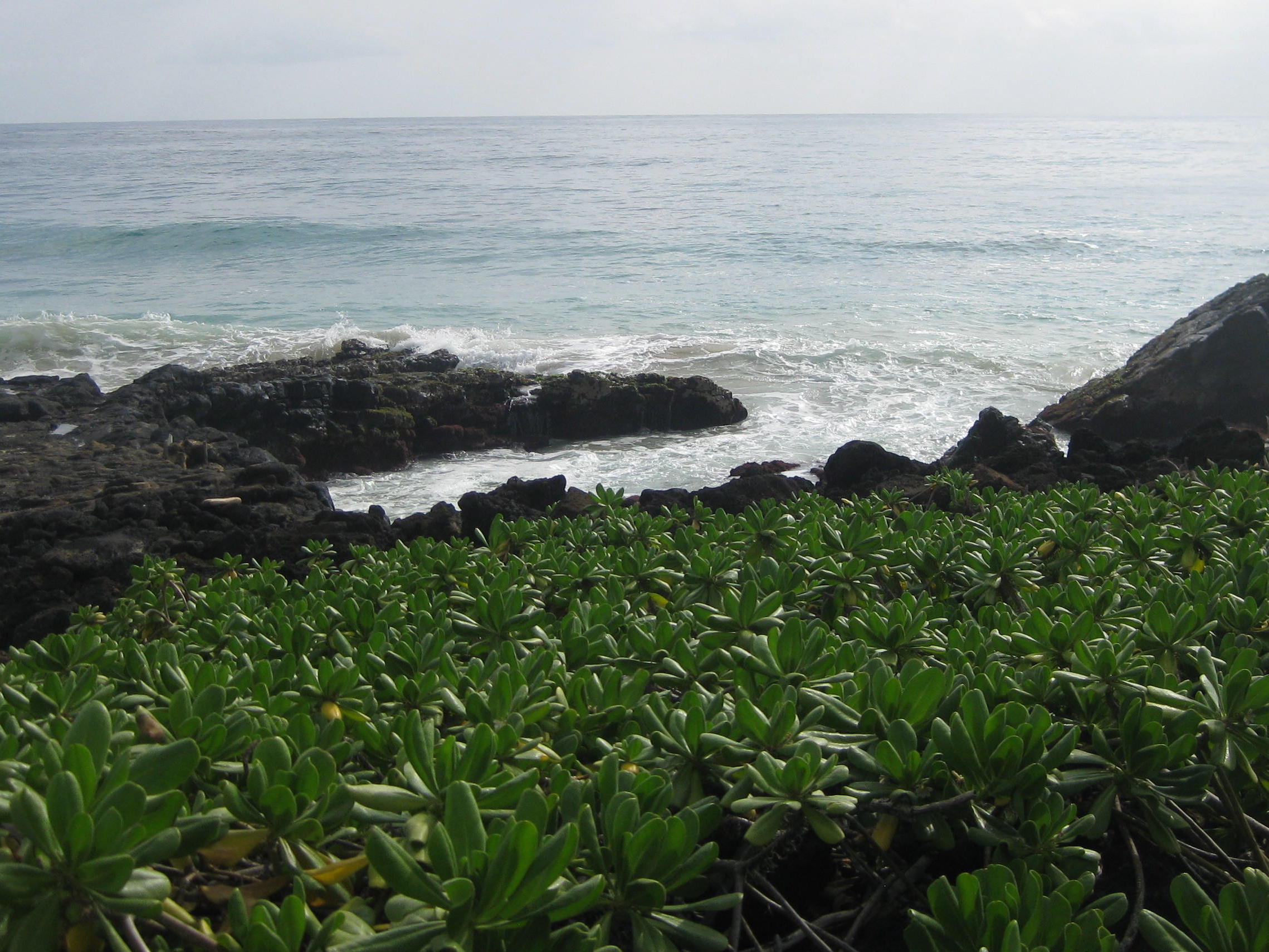 Kauai Beach 3
