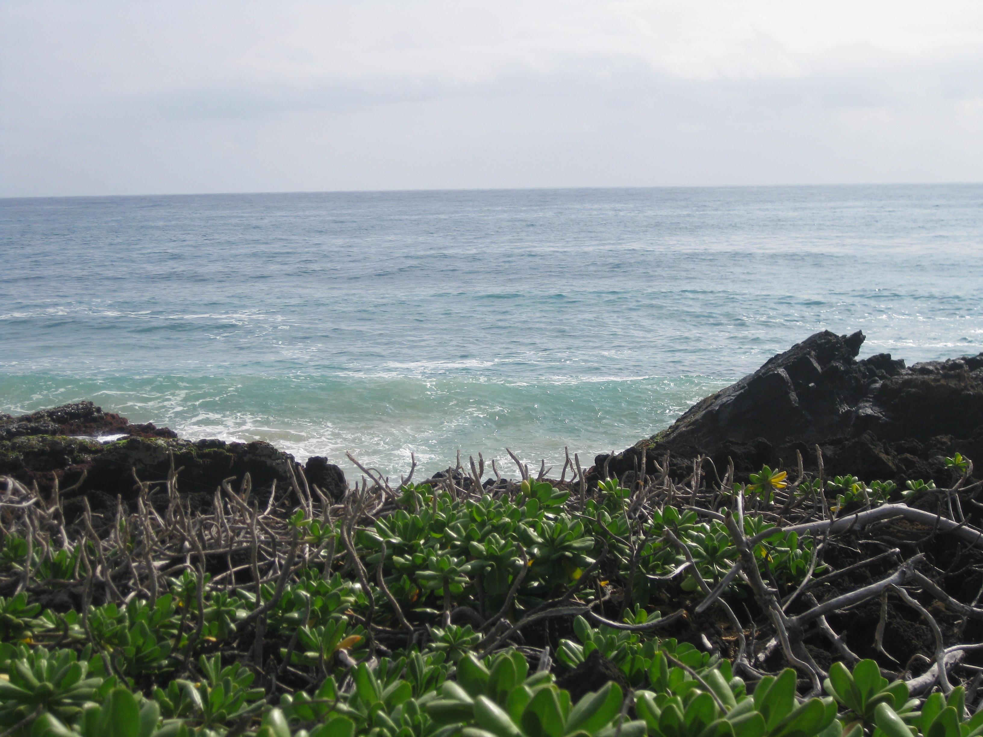 Kauai Beach 5