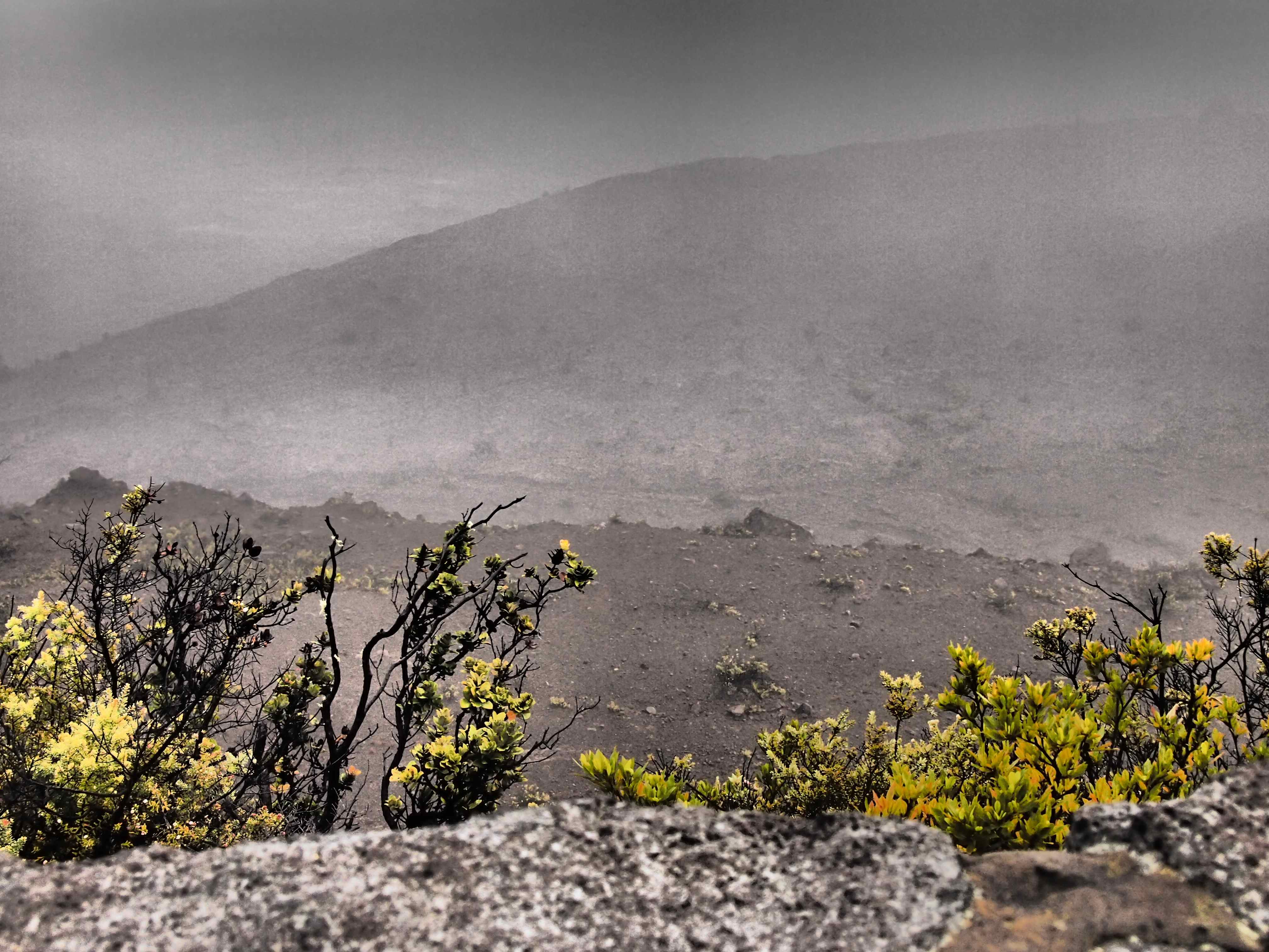 Volcano National Park Foggy 2