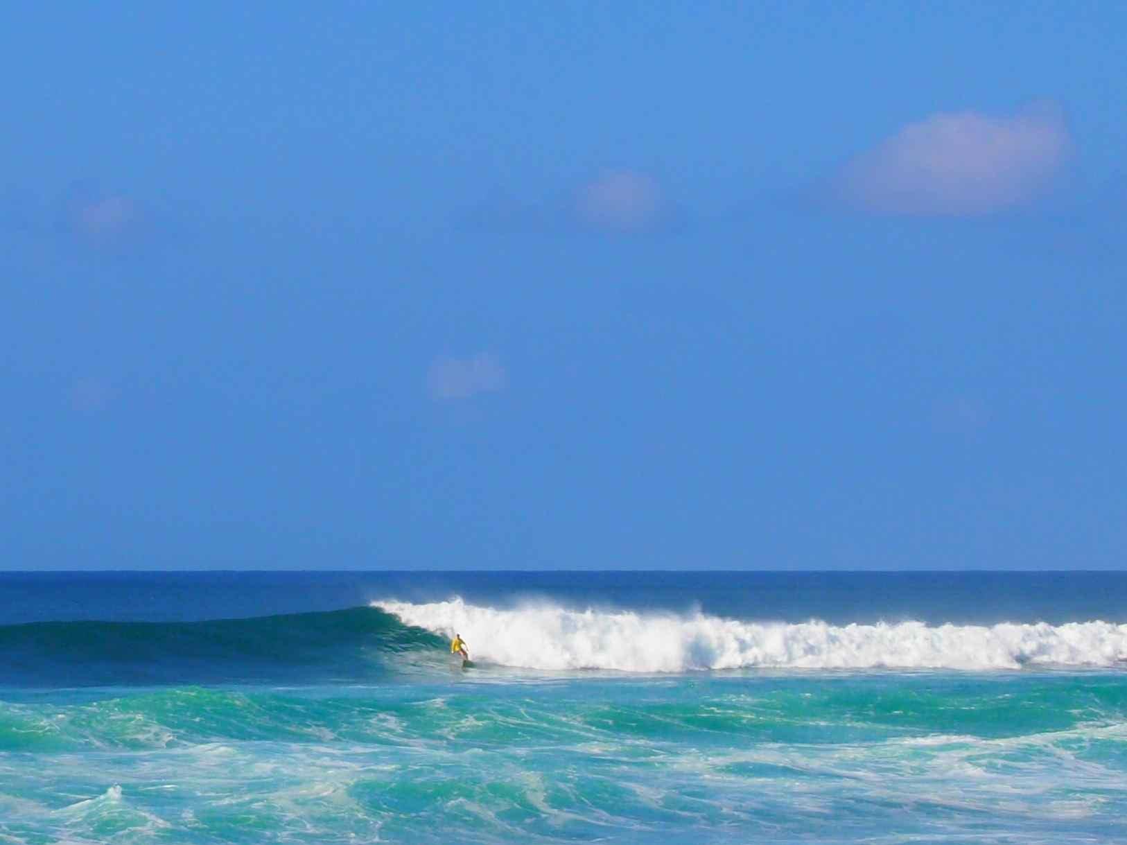 Surfers 1