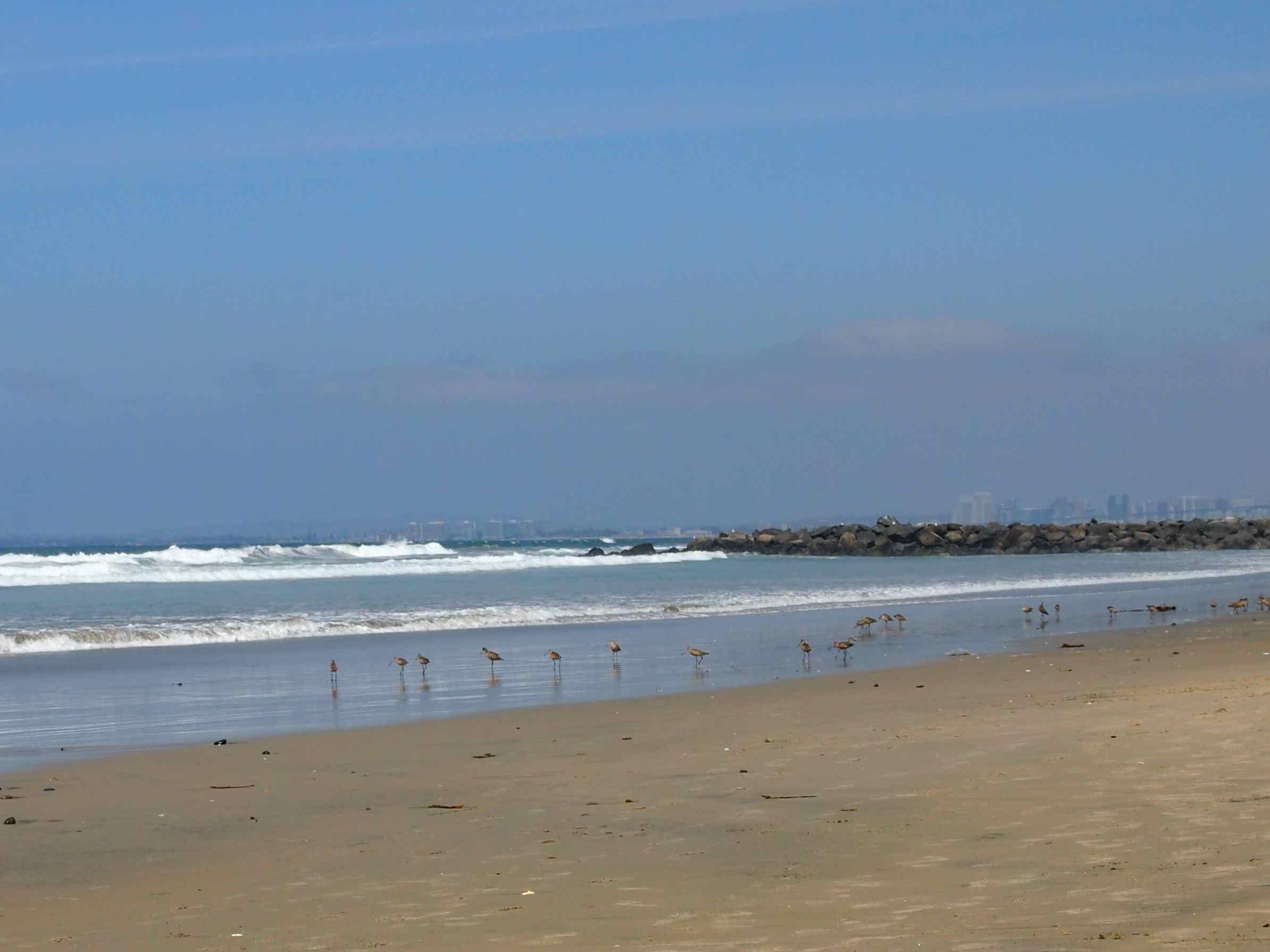 Imperial Beach 5