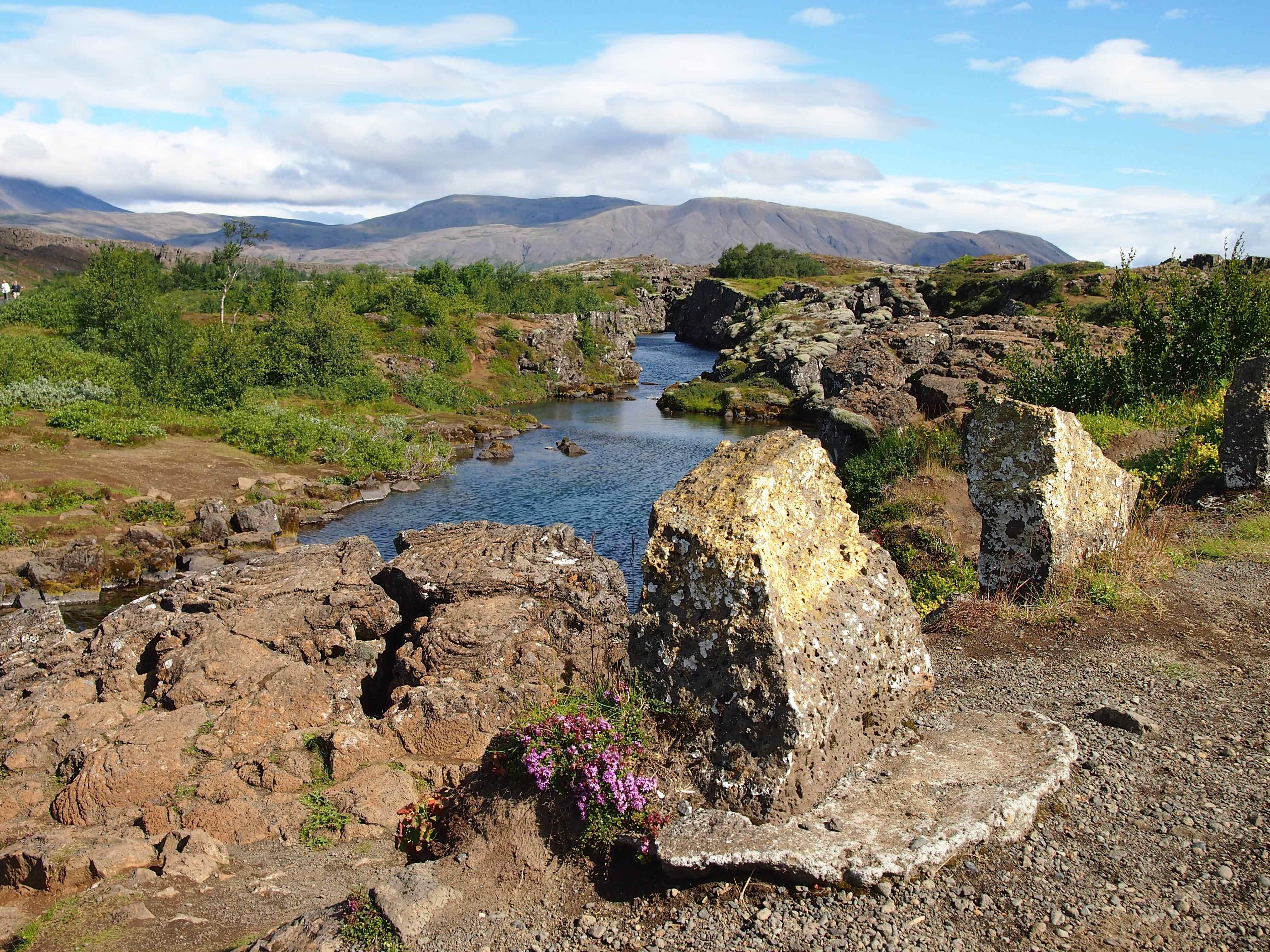 Þingvellir 5