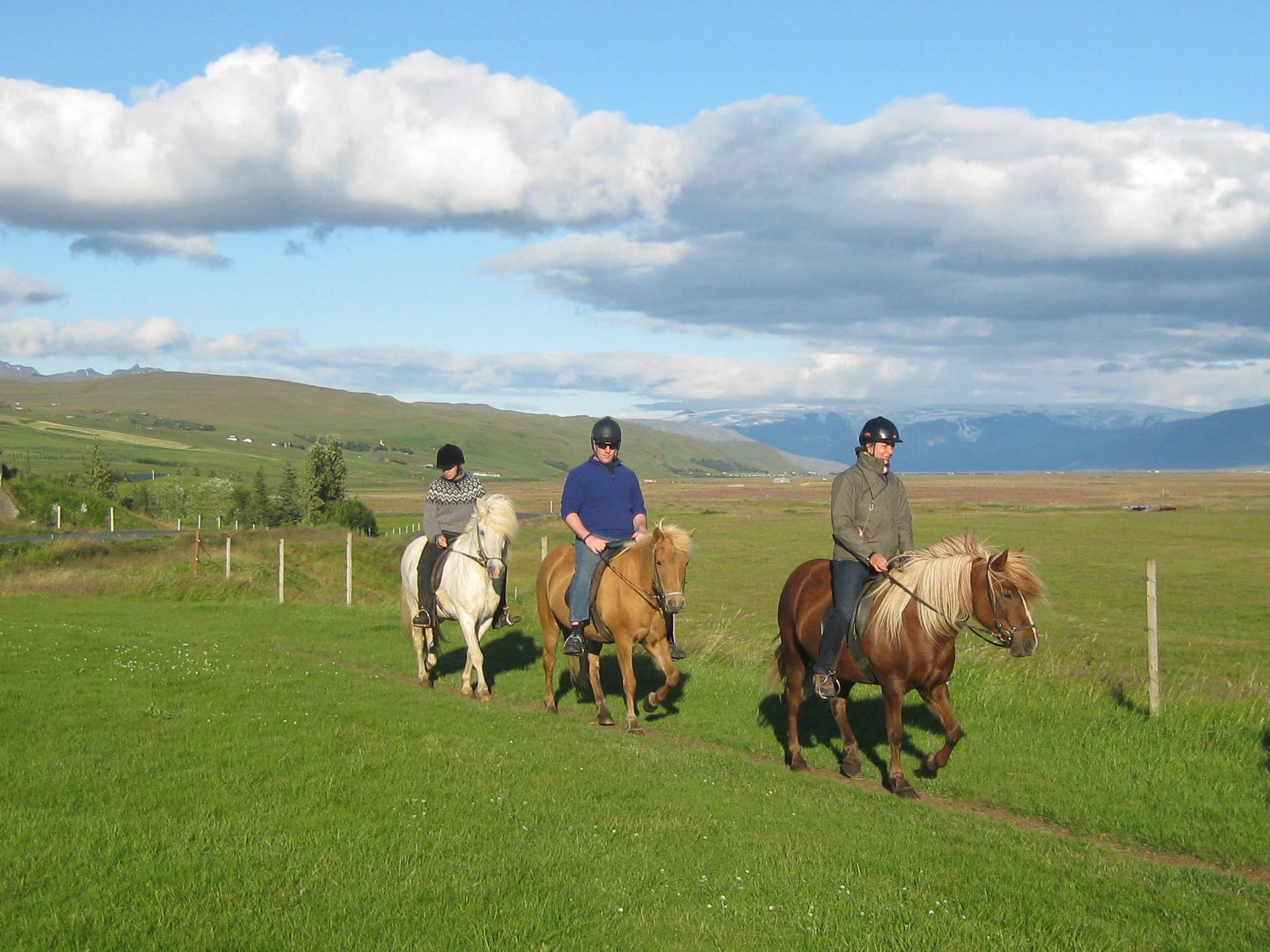 Horse Riding Iceland 3