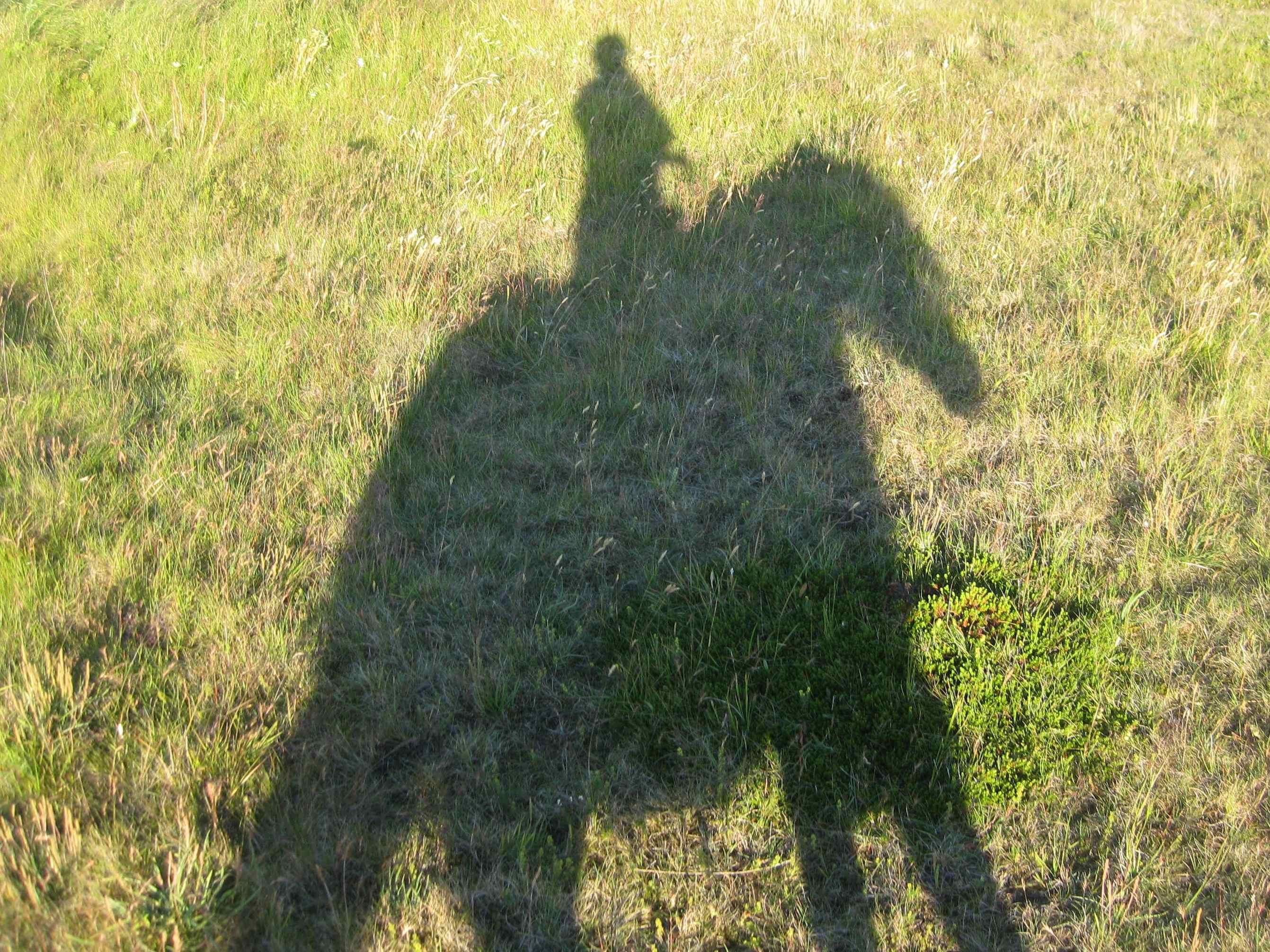Shadow Iceland